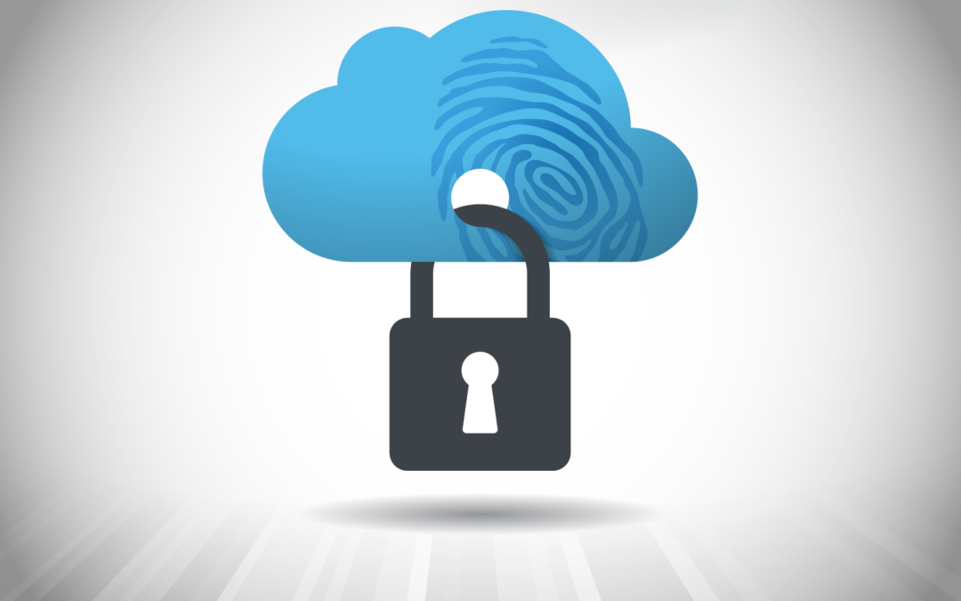 Is Cloud Security Only in the Hands of the Provider?
